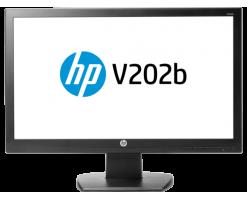 HP V202b 19.5-inch Monitor - X2N37AA#AB4